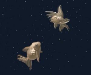 poisson digital